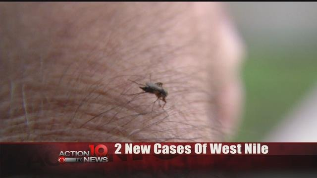 McLennan County has first probable case of West Nile Virus