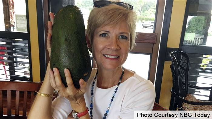 In this Nov. 28, 2017 photo, Pamela Wang poses for a photo in Kealakekua, Hawaii, with an avocado she found while on a walk. Wang is waiting to hear back from Guinness World Records to find out if the 5-pound (2.3-kilogram) avocado she snagged is the worl