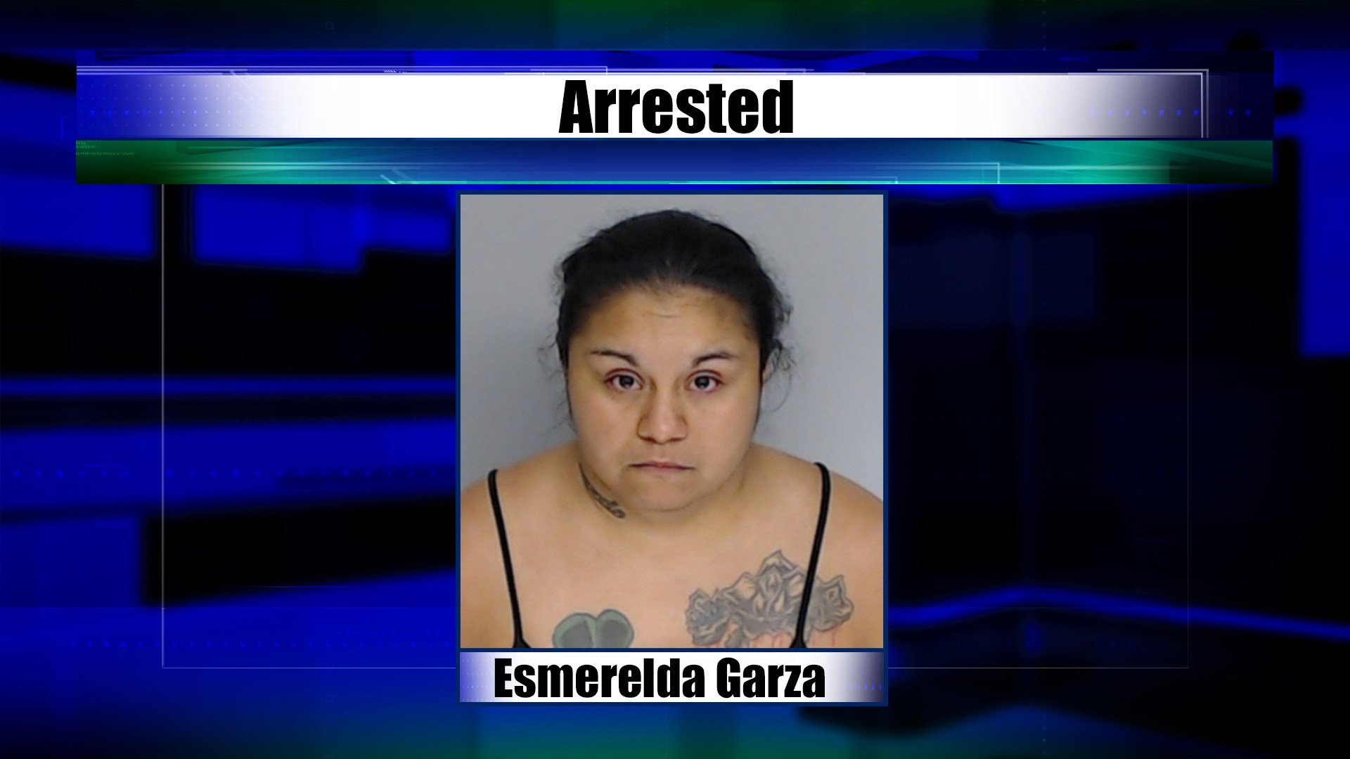 Texas mother arrested for allegedly selling her kids